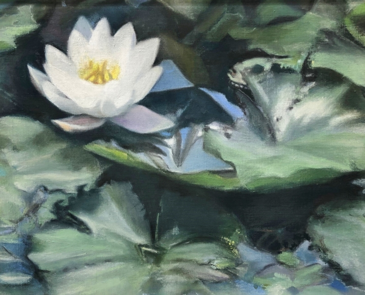 Lotus-Blossum-16x20-oil-and-pastel-by-Evie-Baskin