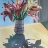 Backlit Liliies