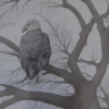 Eagle-silverpoint-2