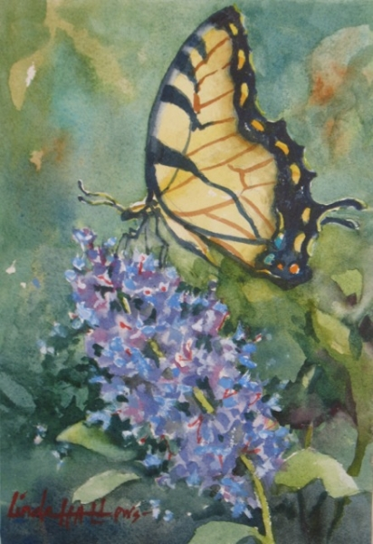 Buddlia and Butterfly