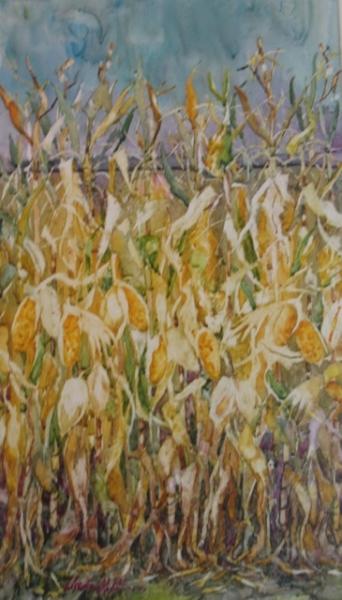 Light on the Corn