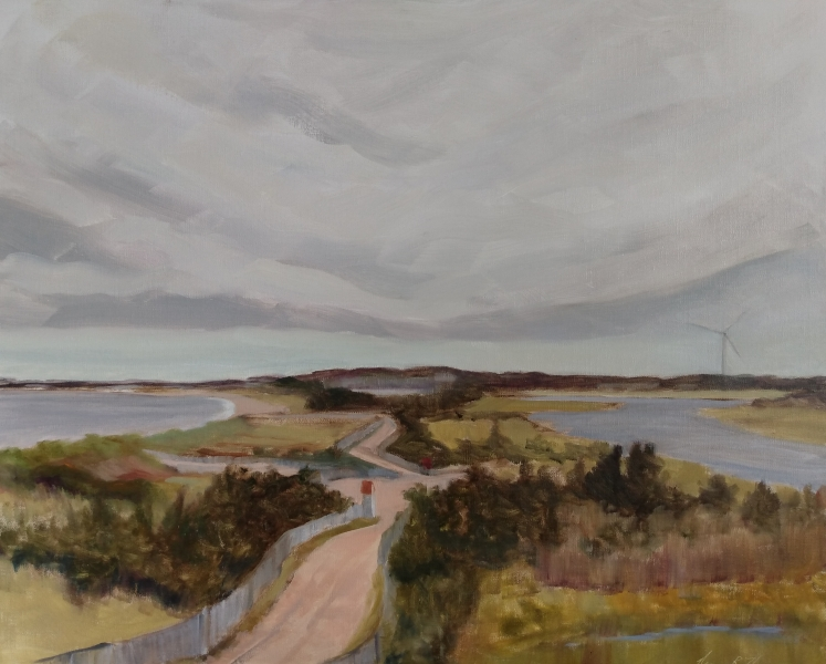 Birds-Eye-View-Broadkill-24X18-Oil